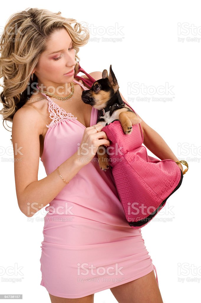 Young woman with a small dog stock photo