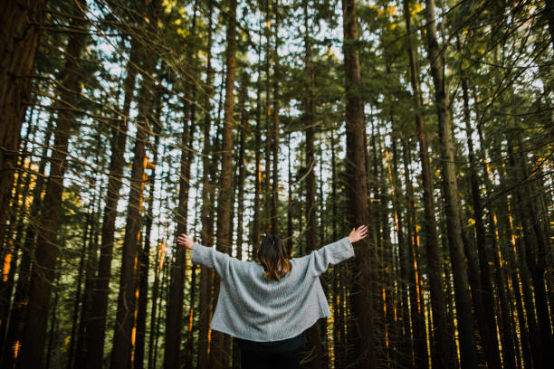 Young woman with arms raised by a forest stock photo