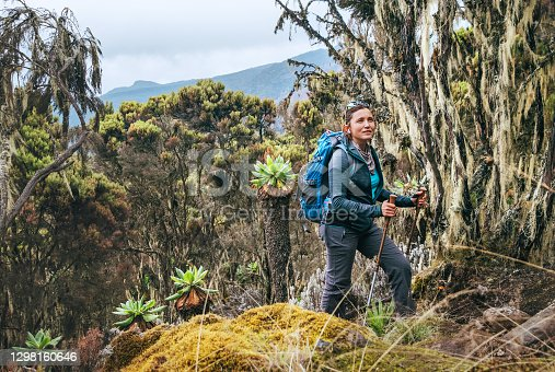 istock Young woman with backpack and trekking poles having a hiking walk on the Umbwe route in the forest to Kilimanjaro mountain. Active climbing people and traveling concept. 1298160646