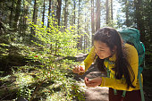 Multi-ethnic woman tasting fresh, wild berries along a hiking trail in Whistler, British Columbia, Canada