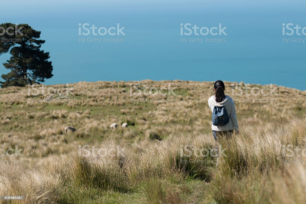 Young woman with backpack walks across  a pasture towards ocean stock photo