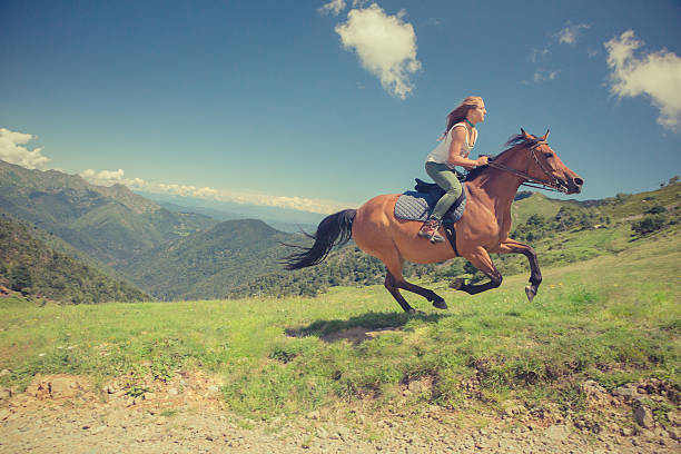 young woman with brown horse at gallop on mountain outdoor - horse bit stock pictures, royalty-free photos & images