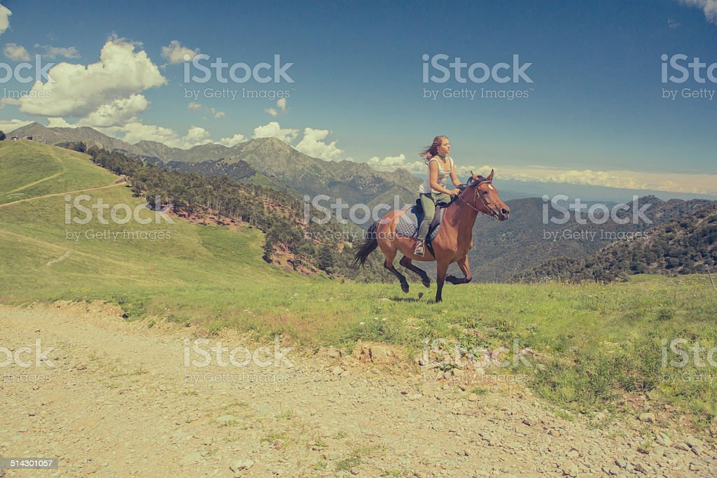 Young woman with brown horse at gallop on mountain outdoor stock photo