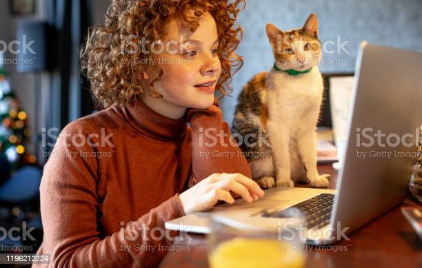Young woman with cat using laptop picture id1196212224?b=1&k=6&m=1196212224&s=612x612&h=9kan2a y5g58ufcyn 1s ag6zi5n g57qnwmvcpsk2e=