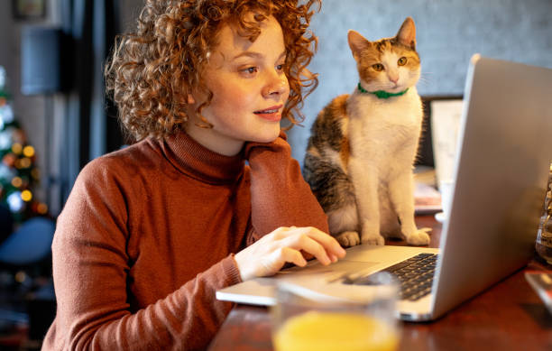 Young woman with cat using laptop stock photo