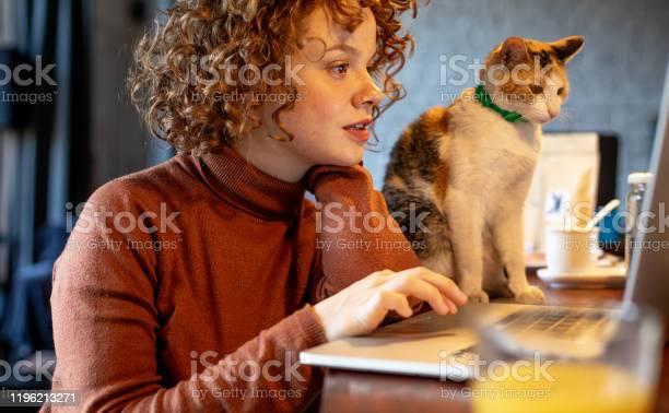 Young woman with cat using laptop picture id1196213271?b=1&k=6&m=1196213271&s=612x612&h=wwmigdjr6laekqn8vclyohk y4rbcxjz6e2lot8fvcs=
