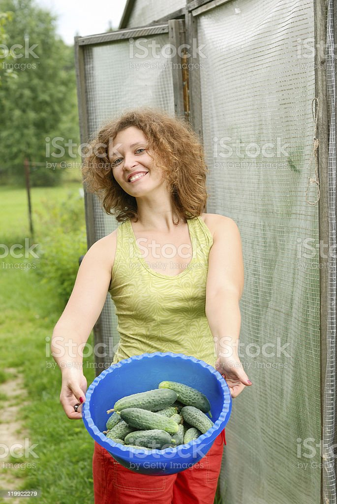 Young woman with crop of cucumbers royalty-free stock photo