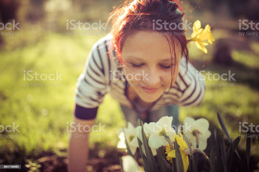 Young woman with daffodils in garden at sunny spring day stock photo