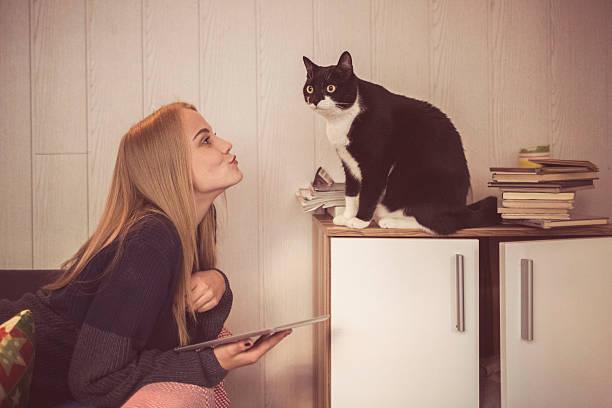 Young woman with digital tablet her cute cat pet picture id514878309?b=1&k=6&m=514878309&s=612x612&w=0&h= nobq5bqtxsa4goy 5orxekqzgm5r9w56pz0aujtyiu=