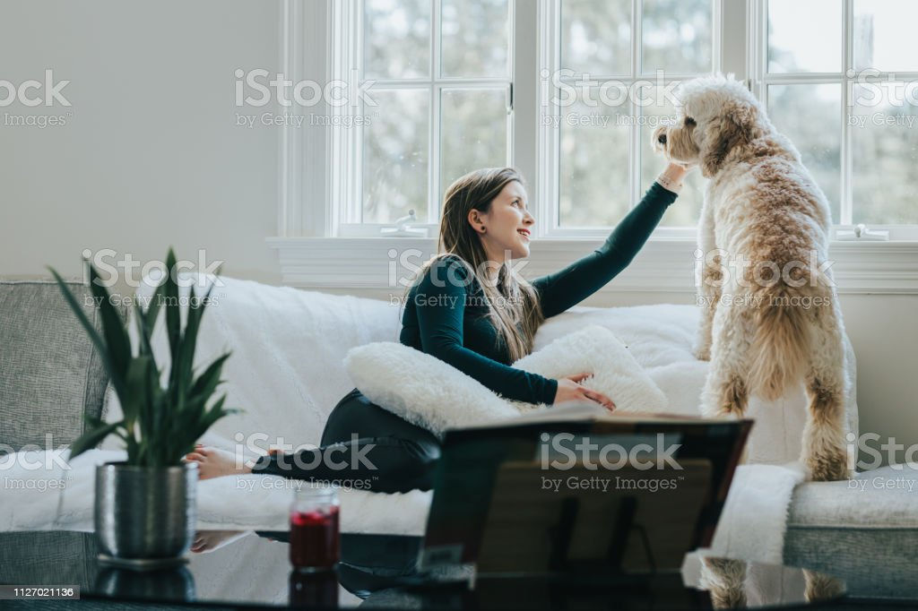 Young woman with dog in the room