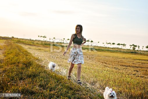 Serbia, Dog, One Woman Only, Summer, Maltese dog