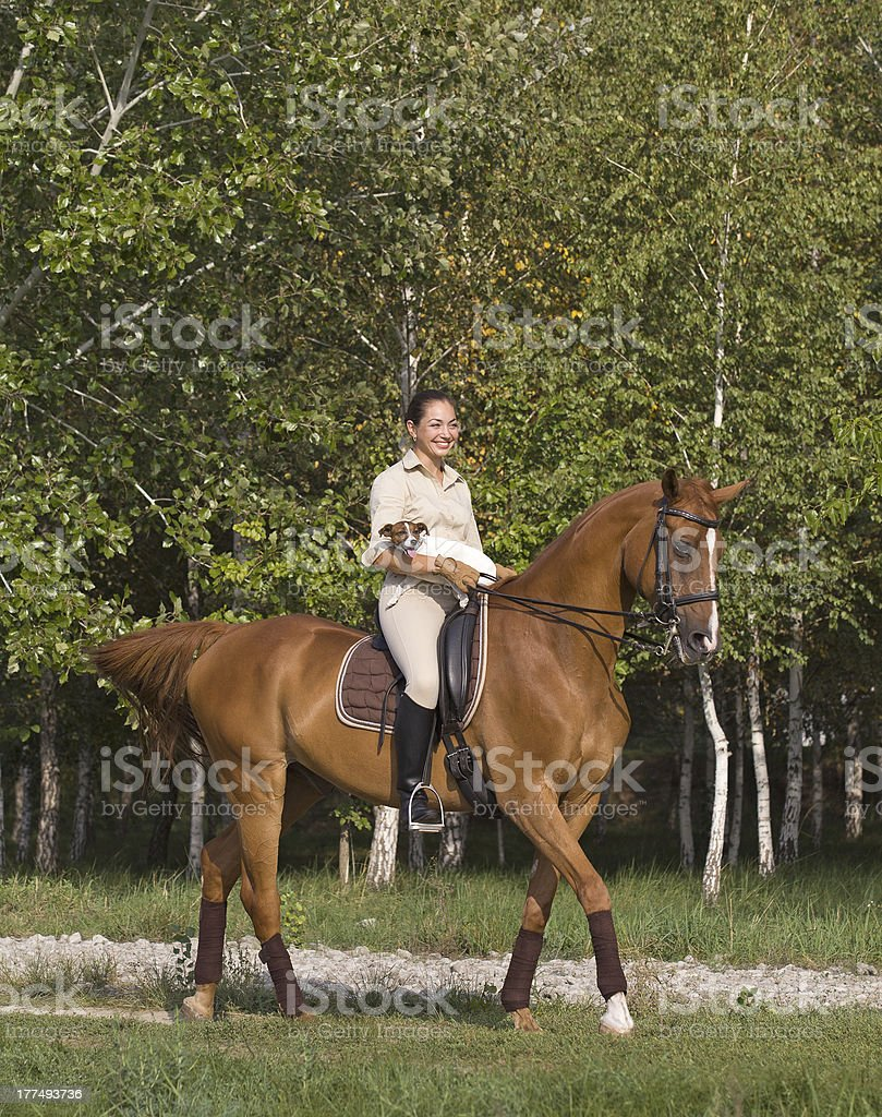 Young woman with dog riding a horse through woodland royalty-free stock photo