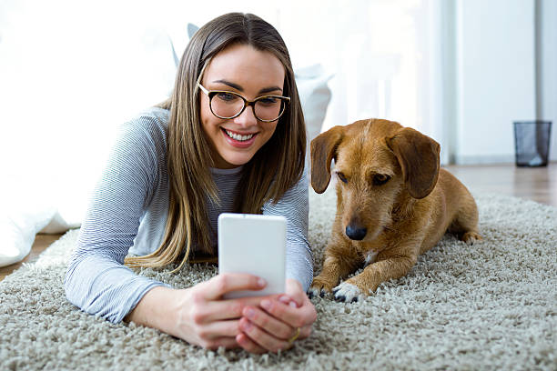 Young woman with her dog using mobile phone at home picture id519709446?b=1&k=6&m=519709446&s=612x612&w=0&h=yfvw gqdlofemopb6g i0slfoixtxcbfhdk mlxhi3w=