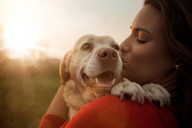 Young woman with her labrador dog picture id1184348616?b=1&k=6&m=1184348616&s=612x612&w=0&h=hemd0w6jhkyxjxgqhhplsjwtiehpthmmgmpkiptfzpy=