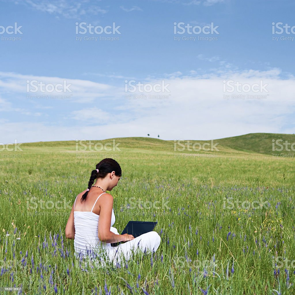 Young woman with laptop on grass royalty-free stock photo