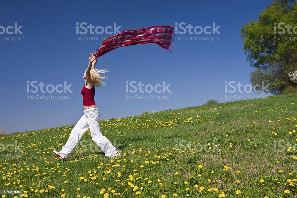young woman with red scarf on meadow royalty-free stock photo