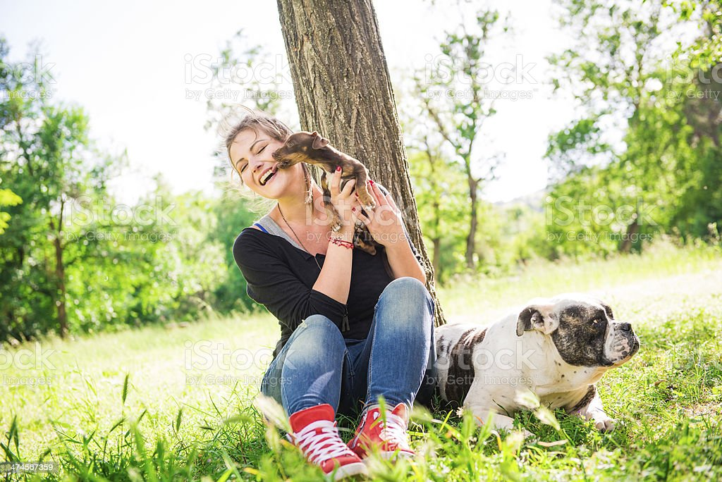 Young woman with two dogs royalty-free stock photo