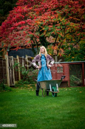 istock Young woman with wheelbarrow unhappy about her garden work (V) 450585021