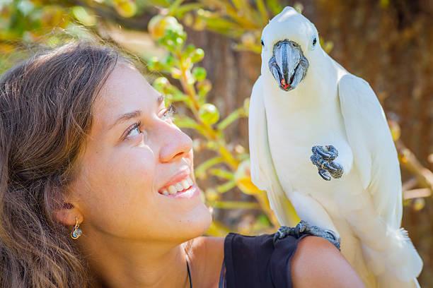 Mujer joven con white parrot sentado en su hombro - foto de stock