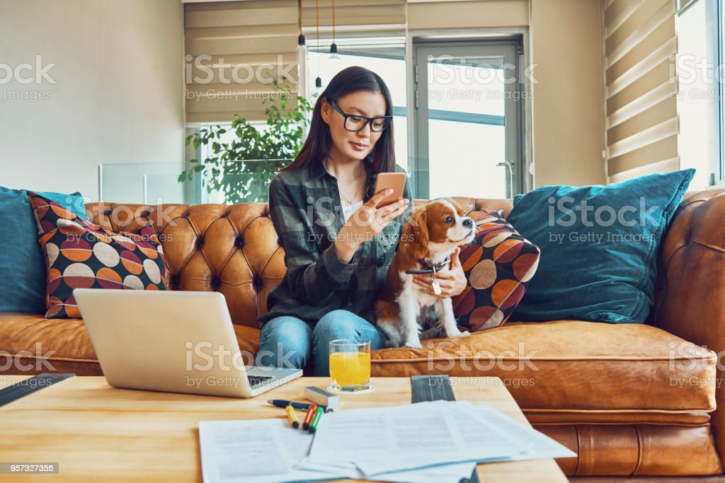young woman working from home in the company of her dog - Foto stock royalty-free di Adulto