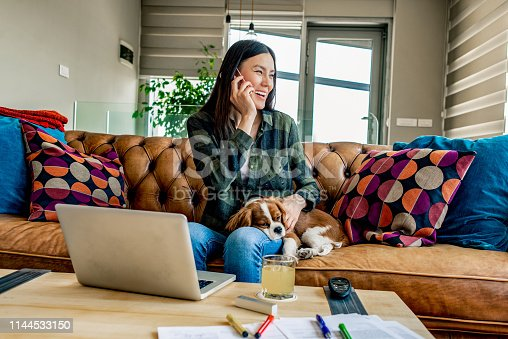 woman working from home in the company of her puppy