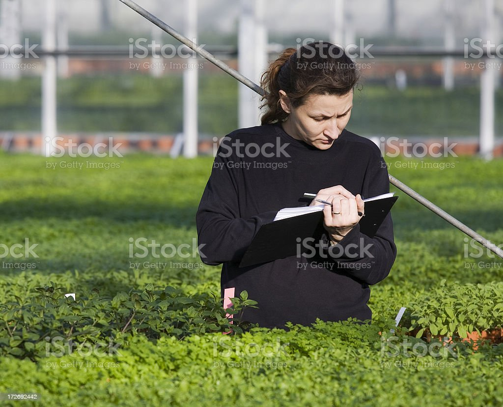 Young woman working in green house royalty-free stock photo