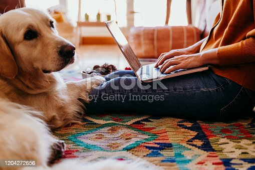 young woman working on laptop at home. cute golden retriever dog besides. healthy breakfast time. technology and lifestyle indoors