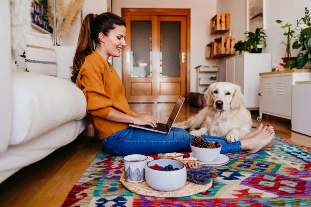 young woman working on laptop at home. cute golden retriever dog besides. healthy breakfast time. technology and lifestyle indoors stock photo