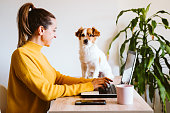 istock young woman working on laptop at home,cute small dog besides. work from home, stay safe during coronavirus covid-2019 concpt 1215788057