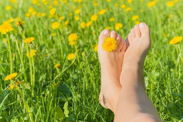 young woman's barefoot relaxing on the green grass with yellow dandelion between toes in sunny spring day. restful moment. healthy lifestyle. fresh, blooming flowers in meadow. - scalzo foto e immagini stock