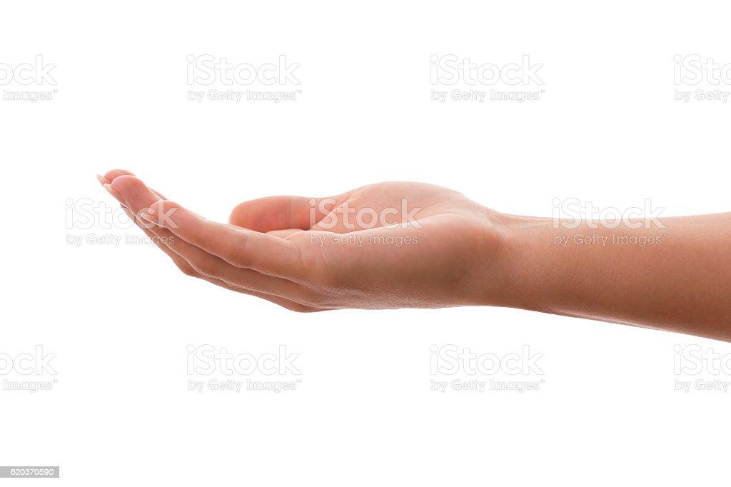 Young Woman's Hand Holding zbiór zdjęć royalty-free