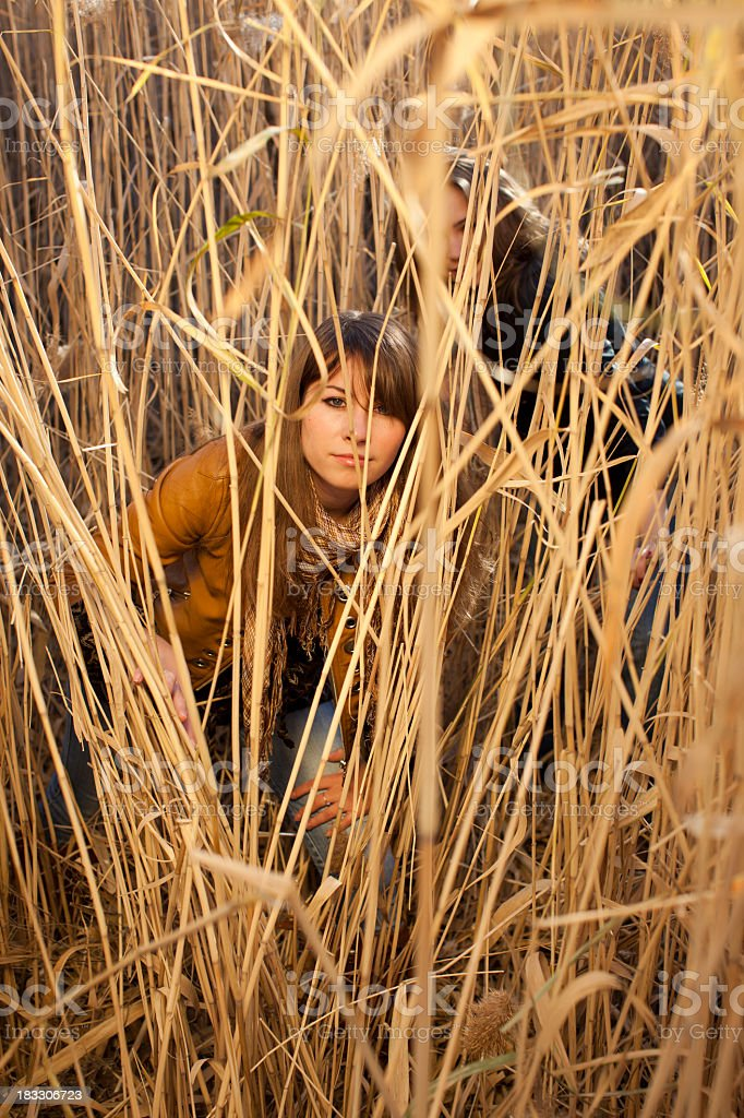 Young Women and Beautiful Yellow Reeds stock photo