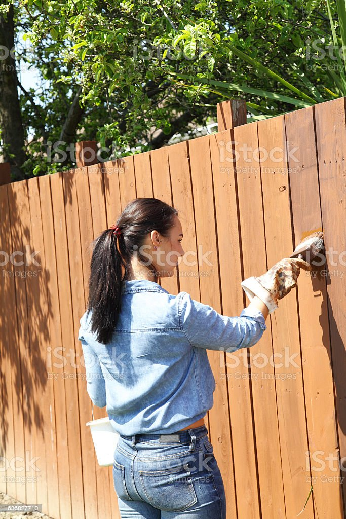 young women creosoting wooden fence stock photo