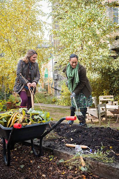 Young Women Digging In Urban City Garden, London, Europe stock photo