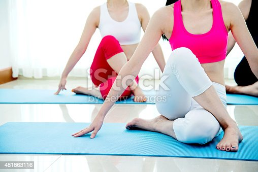 istock Young women doing stretching exercises 481863116