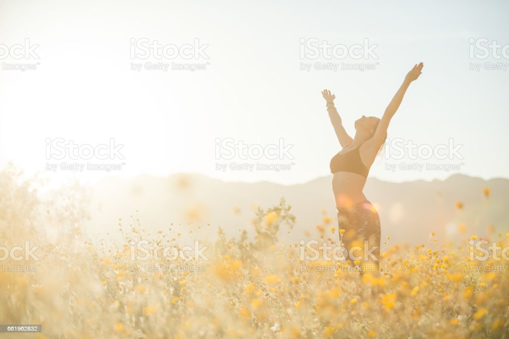 Young Women Doing Yoga In A Flower Field royalty-free stock photo