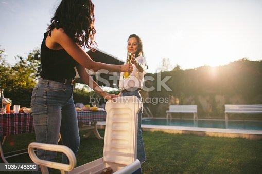 istock Young women enjoying garden party with beer 1035748690