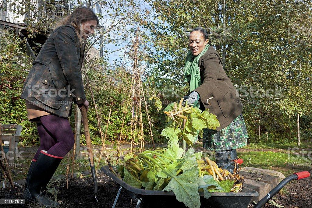 Young Women Enjoying Gardening, London City, UK stock photo