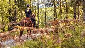 Young women enjoying riding a horse through forest.