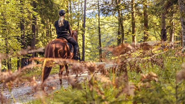 Young women enjoying horseback riding in nature picture id546174810?b=1&k=6&m=546174810&s=612x612&w=0&h=3lyumo06fghv8harwi8vud7 lhto42uonpsdo9jp6j8=