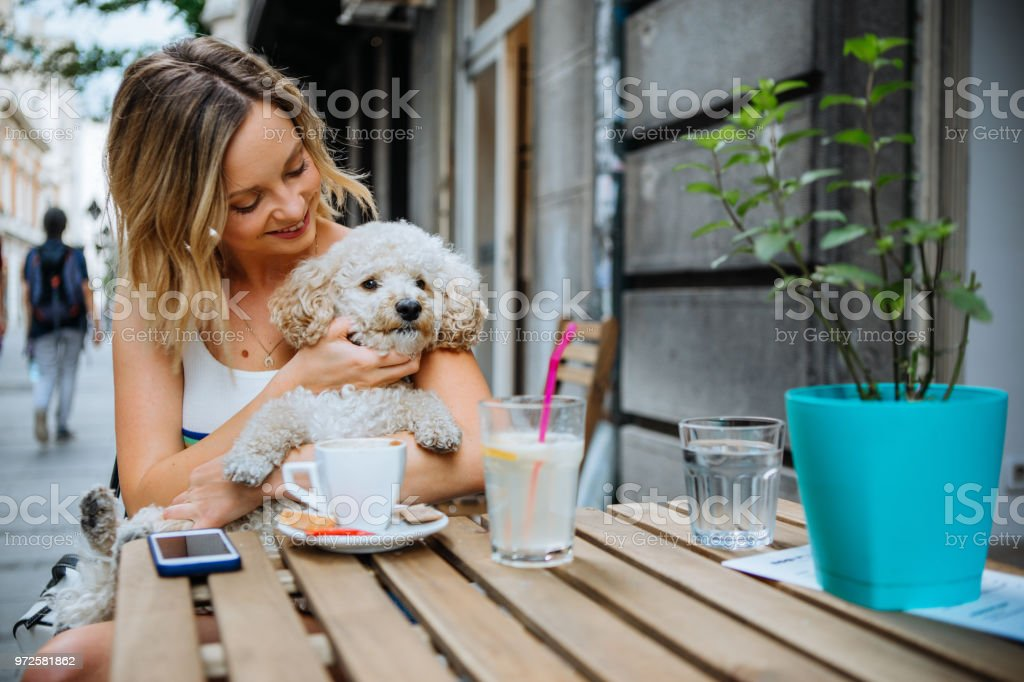 Young women in pet friendly cafe stock photo