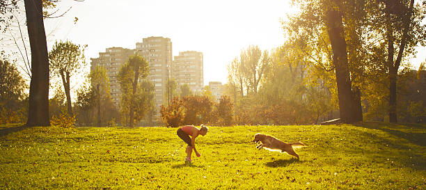 Young women playing with her dog stock photo