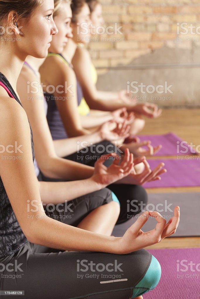 Young Women Practicing Lotus Pose in Group Yoga Workout Class stock photo