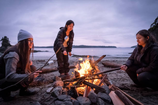 Young Women Roasting Marshmallows on Campfire on Remote, Winter Beach Mixed ethnic, Eurasian sisters roast marshmallows on sticks.  Bamfield, Vancouver Island, British Columbia, Canada. bonfire stock pictures, royalty-free photos & images