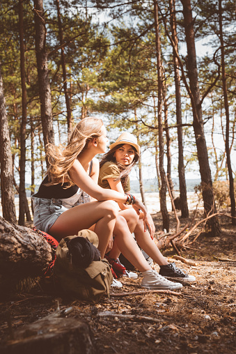 Young Women Talking While Sitting On Fallen Tree Stock Photo - Download Image Now