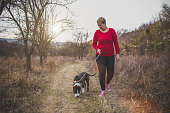 A women and her dog (American staffordshire terrier) walking in a park in autumn.