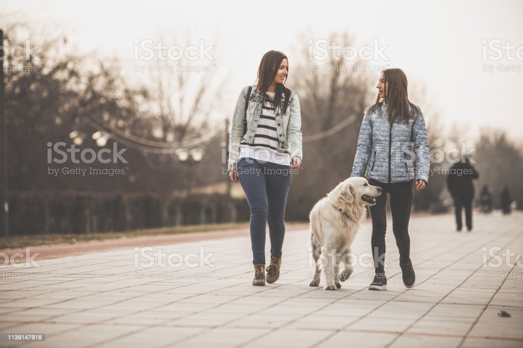 Full length of two female friends walking the dog and enjoying spring...