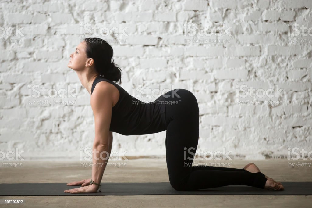 Young yogi attractive woman in Cow pose, white loft background stock photo