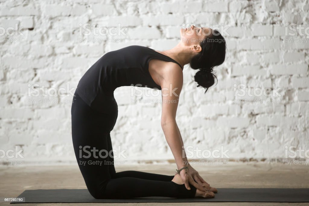 Young yogi attractive woman in Ustrasana pose, white loft background stock photo
