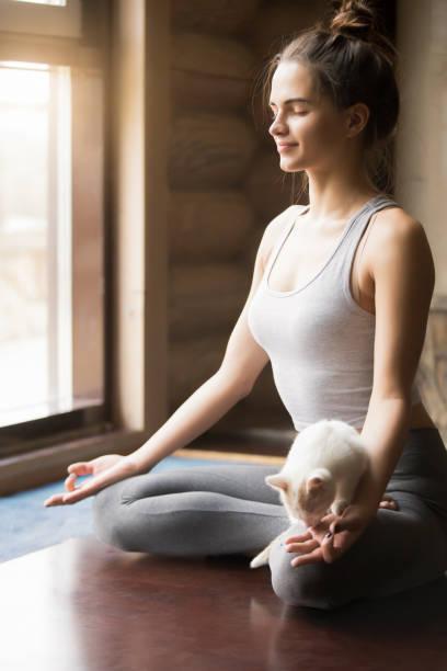Young yogi woman in Half Lotus pose, home interior background stock photo